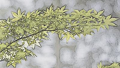 Blätter mit Effekt 'Fotokopie'