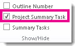 Show the project summary task