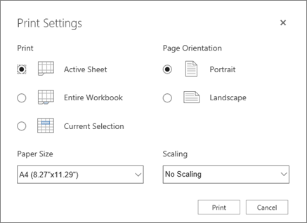 Print Options after clicking File > Print