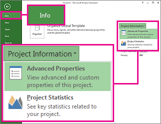 Project Information menu with Advanced Properties highlighted
