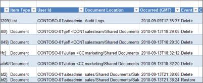 Delete Audit Report Report Data