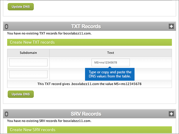 how to add dns caa record as text record