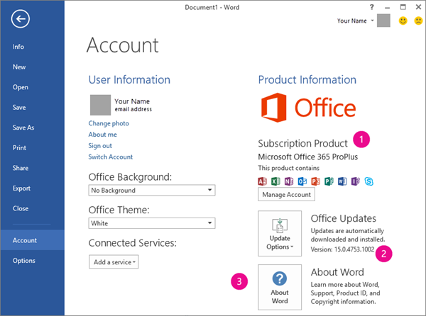 File > Account in an Office 365 subscription