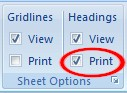 Print check box in the Sheet Options group