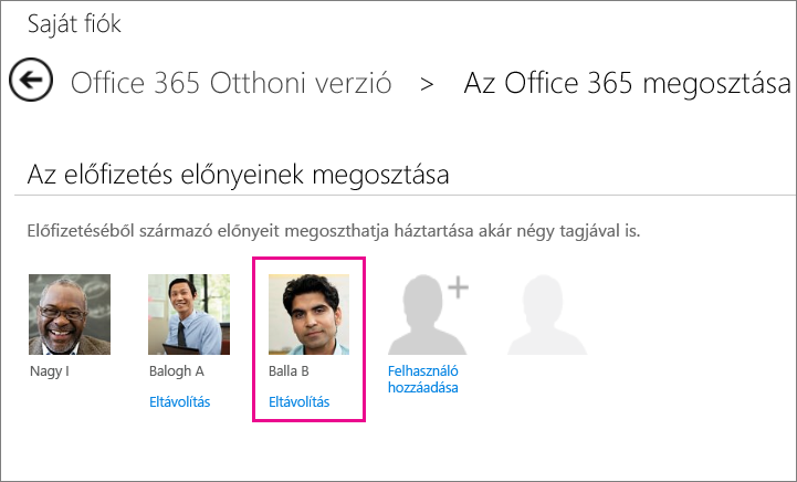 """Képernyőkép: az Office365-előfizetés megosztására szolgáló lap a kiemelt """"Felhasználó eltávolítása"""" lehetőséggel."""