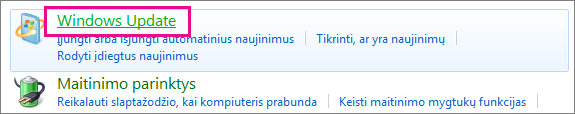 """Windows Update"" saitas valdymo skyde"