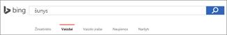 """""""Bing"""" vaizdų ieškos lauke įvesta užklausa"""