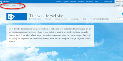 Standaardpagina-indeling voor openbare website van Office 365