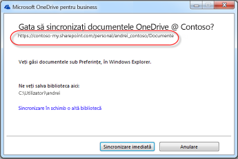 Expertul OneDrive pentru Business cu adresa URL completată în avans