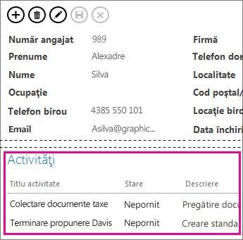 O vizualizare dintr-o aplicație Access cu activități afișate într-un control Elemente asociate.