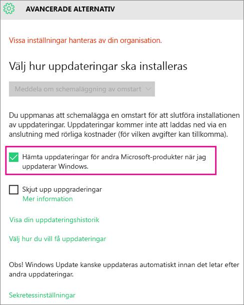 Avancerade alternativ i Windows Update